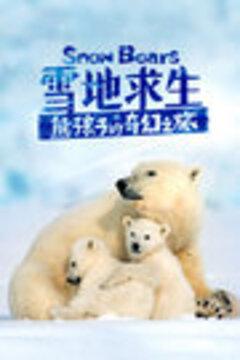 雪地求生:熊孩子的奇幻之旅高清海报