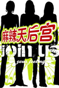 麻辣天后宫 2010高清海报