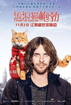 流浪猫鲍勃高清海报