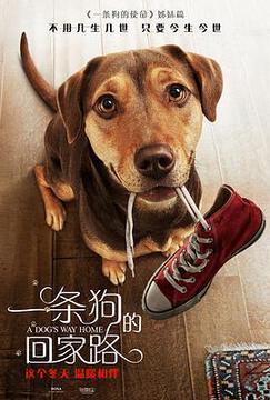 一条狗的回家路_西欧黄片