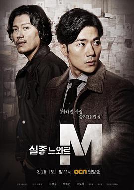 特殊失踪专案组:失踪的黑色M高清海报