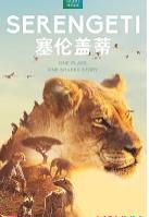 塞伦盖蒂_免费中国人做人爱视频