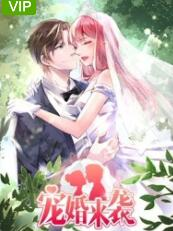 宠婚来袭高清海报