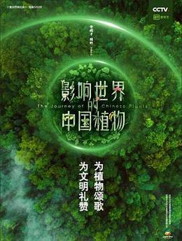 影响世界的中国植物高清海报