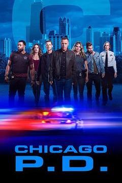 芝加哥警署第七季高清海报