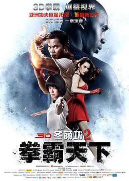冬荫功2:拳霸天下高清海报