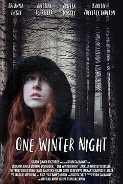 一个冬夜高清海报