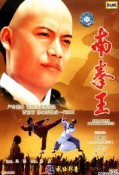 南拳王高清海报