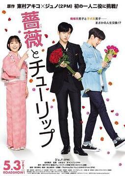 玫瑰与郁金香高清海报