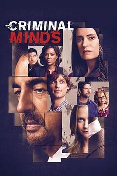 犯罪心理第十五季高清海报