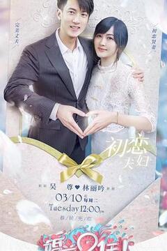 婚前21天备婚日记高清海报