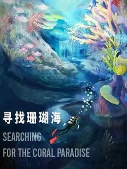 寻找珊瑚海_在线午夜福利