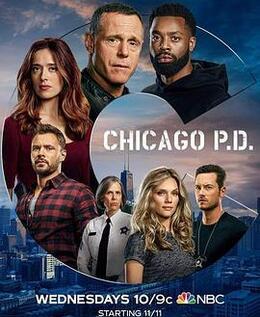 芝加哥警署第八季高清海报