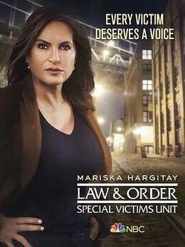 法律与秩序:特殊受害者第二十二季高清海报