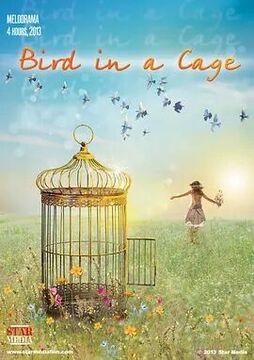笼中鸟高清海报